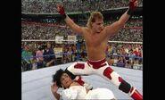 WrestleMania VIII.00006