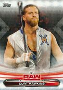 2019 WWE Raw Wrestling Cards (Topps) Curt Hawkins 19