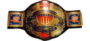 Nwa-national-heavyweight-title