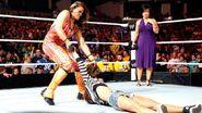Survivor Series 2012 25