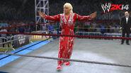 WWE 2K14 Screenshot.112