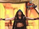 2004 WWE Divas 2005 (Fleer) Jazz (No.33)