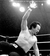Mr-Fuji.13