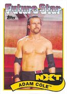 2018 WWE Heritage Wrestling Cards (Topps) Adam Cole 91