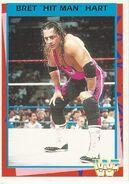 1995 WWF Wrestling Trading Cards (Merlin) Bret Hart 46
