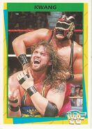 1995 WWF Wrestling Trading Cards (Merlin) Kwang 155