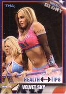 2013 TNA Impact Glory Wrestling Cards (Tristar) Velvet Sky 46