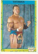 1995 WWF Wrestling Trading Cards (Merlin) Tatanka 3