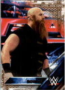 2016 WWE (Topps) Then, Now, Forever Erick Rowan 120