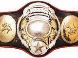 PWF Heavyweight Championship