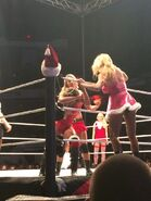 WWE House Show (Dec 29, 14') 4