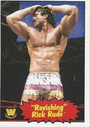 0cc35970 Rick Rude/Merchandise | Pro Wrestling | FANDOM powered by Wikia