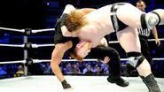 WrestleMania Revenge Tour 2013 - Cardiff.2
