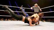 WrestleMania Revenge Tour 2013 - Lodz.8