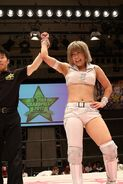 Stardom 5STAR Grand Prix 2017 - Night 9 9