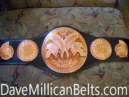 WWE World Tag Team Champion