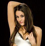 Nikki Bella.29