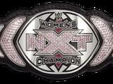 2013 NXT Women's Championship Tournament