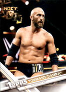 2017 WWE Wrestling Cards (Topps) Tommaso Ciampa 87