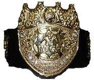 IWGP Tag Team Champion