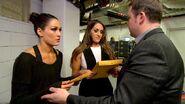 The New Divas Champion 2
