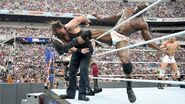 WrestleMania 33.18