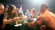 WrestleMania Revenge Tour 2013 - Liège.2