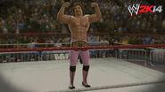 WWE 2K14 Screenshot.133