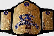 WWE Smackdown Tag Team Champion
