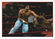 2009 WWE (Topps) Primo 6