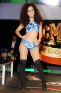 CMLL Martes Arena Mexico 8-29-17 19
