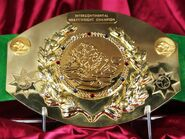 WWF Intercontinental Champion (old)