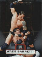 2010 WWE Platinum Trading Cards Wade Barrett 114