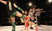 January 17, 2015 Ice Ribbon 1