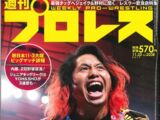 Weekly Pro Wrestling No. 2038