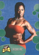 2001 WWF The Ultimate Diva Collection (Fleer) Jacqueline 11