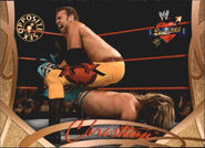 2004 WWE Divas 2005 (Fleer) Christian 69