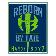 The Hardy Boyz Metal Sign