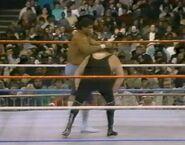 1.16.88 WWF Superstars.00018