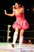 March 28, 2015 Ice Ribbon 2