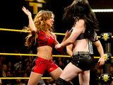December 18, 2013 NXT results