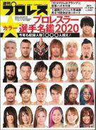 Weekly Pro Wrestling 2042