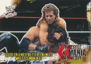 2001 WWF WrestleMania (Fleer) Good Friends, Better Enemies 91