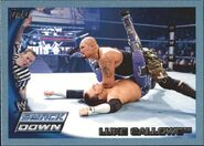 2010 WWE (Topps) Luke Gallows 10