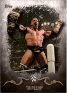 2016 Topps WWE Undisputed Wrestling Cards Triple H 35