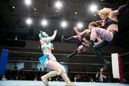 Estrella Executive Committee-Stardom-Tokyo Gurentai Produce Lucha Libre Estrella Fiesta 2