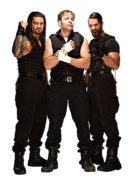 Theshield full