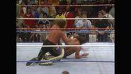 WrestleMania VII.00030