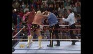Survivor Series 1989.00007