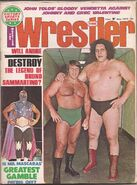 Bruno Sammartino and Andre The Giant.